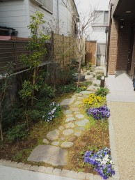 早春の庭1