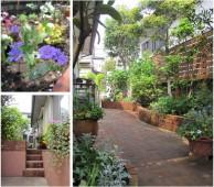 ガーデンライフを楽しむお庭