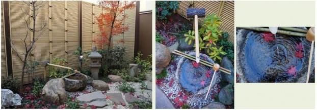 秋の庭景色3