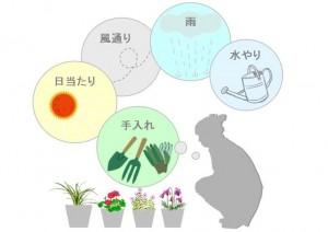 植物選びは環境に配慮