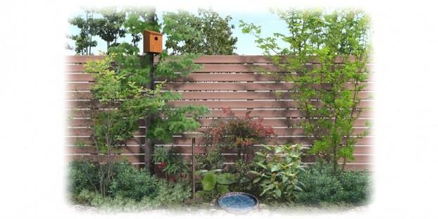 鳥を呼ぶ庭