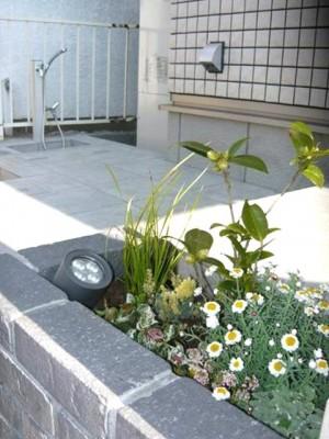 門袖脇の花壇