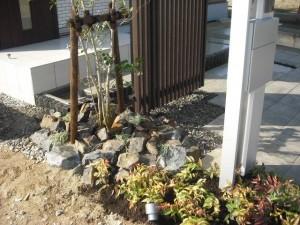 植栽とスポットライト