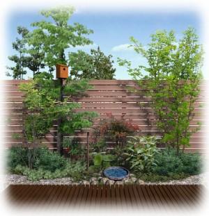 鳥を呼ぶ庭2