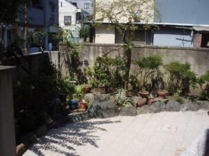 神奈川 思い出の植木