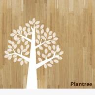 plantree_rogo
